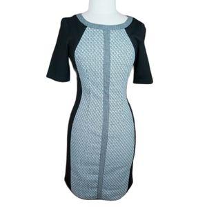 Tristan bodycon rear hidden zip stretchy dress